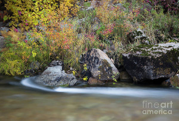 Wall Art - Photograph - Autumn Flow by Idaho Scenic Images Linda Lantzy