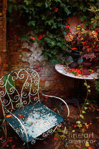 Photograph - Autumn Garden by Ariadna De Raadt