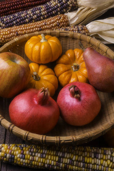 Harvesting Wall Art - Photograph - Autumn Harvest Basket  by Garry Gay