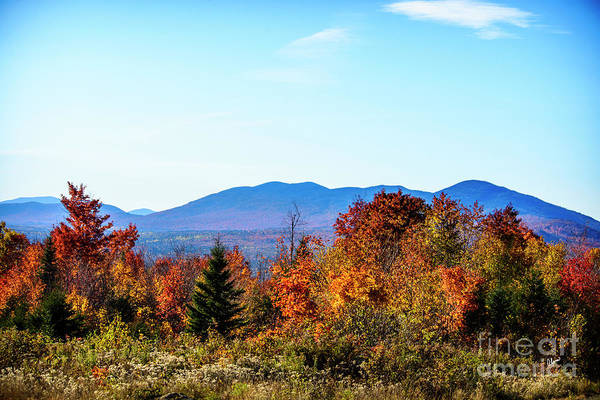 Photograph - Autumn In Maine by Alana Ranney