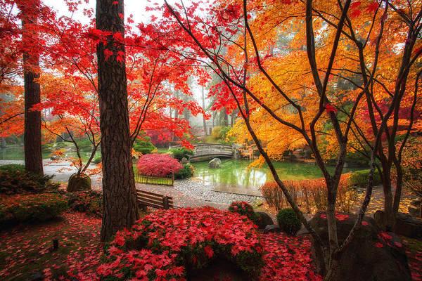 Manito Park Spokane Photograph - Autumn In Manito Park by James Richman