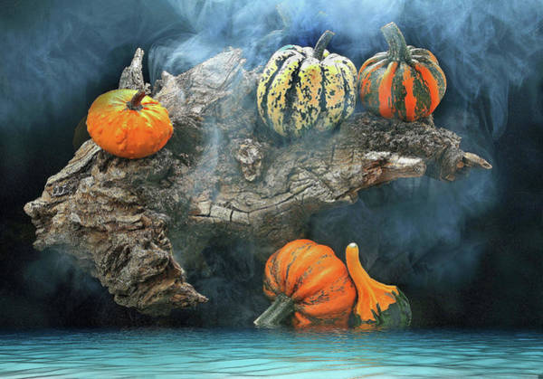 Pumkin Wall Art - Photograph - Autumn by Manfred Lutzius