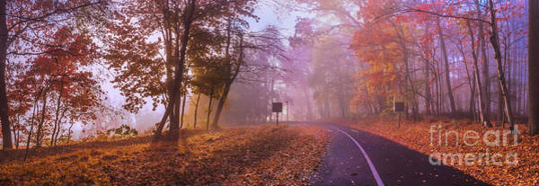 Photograph - Autumn Morning by Rima Biswas