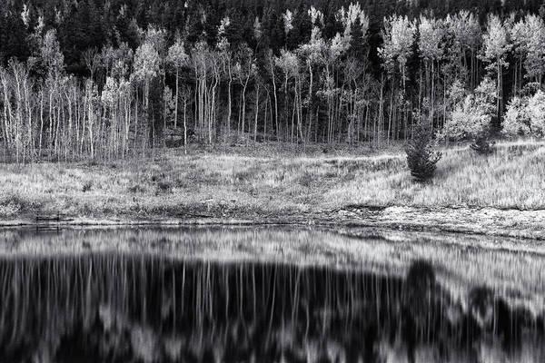 Photograph - Autumn Pond Reflections by John De Bord