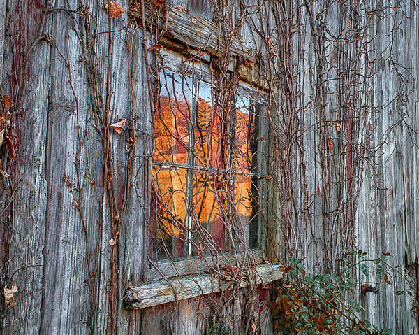 Photograph - Autumn Reflections by John Vose
