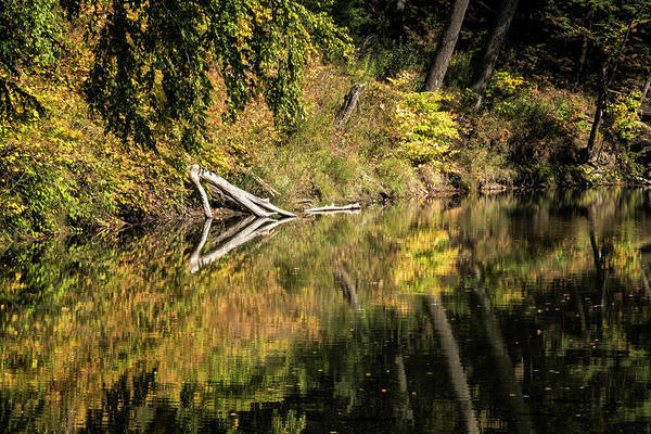 Photograph - Autumn Reflections by Tom Singleton