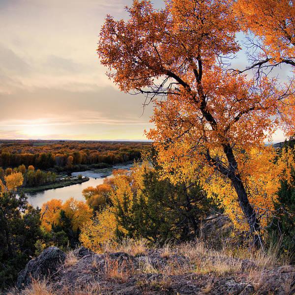 Wall Art - Photograph - Autumns Best by Leland D Howard