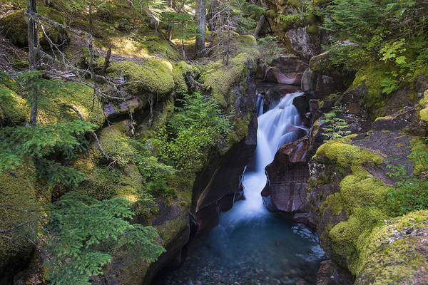 Photograph - Avalanche Gorge by Gary Lengyel