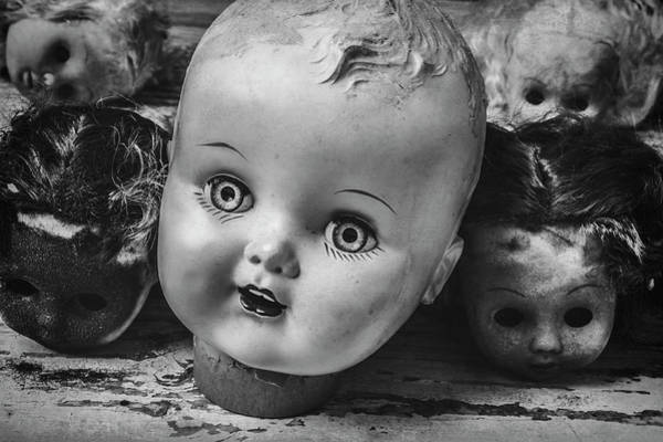 Wall Art - Photograph - Baby Doll Heads by Garry Gay