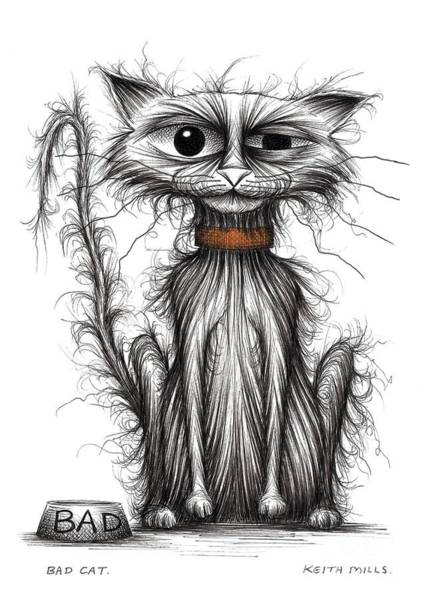 Miserable Drawing - Bad Cat by Keith Mills