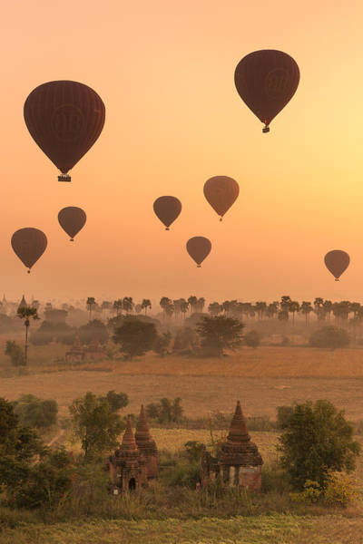 Photograph - Balloons Sky by Marji Lang