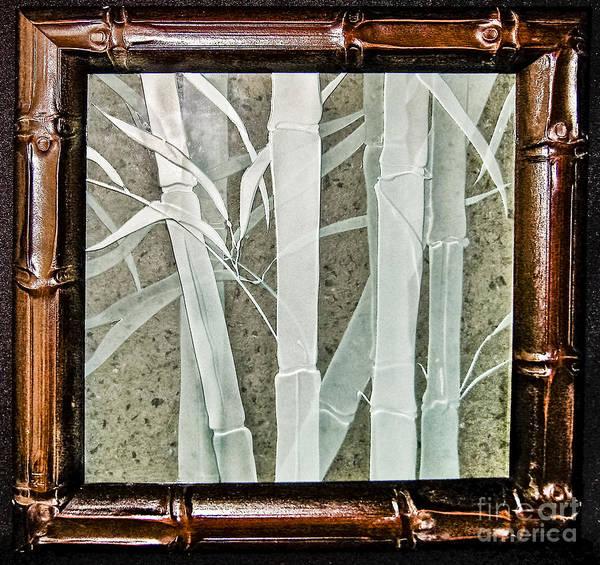 Glass Art - Bamboo by Alone Larsen