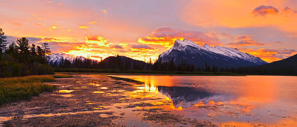 Photograph - Banff National Park by U Schade