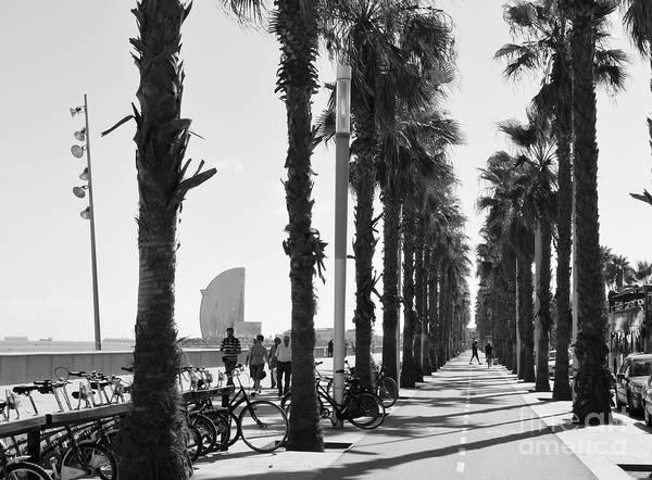 Photograph - Barcelona1 by Karina Plachetka