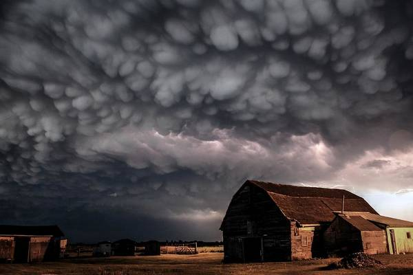 Photograph - Barn Storming by David Matthews