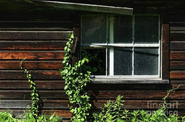 Photograph - Barn Window by Debra Fedchin