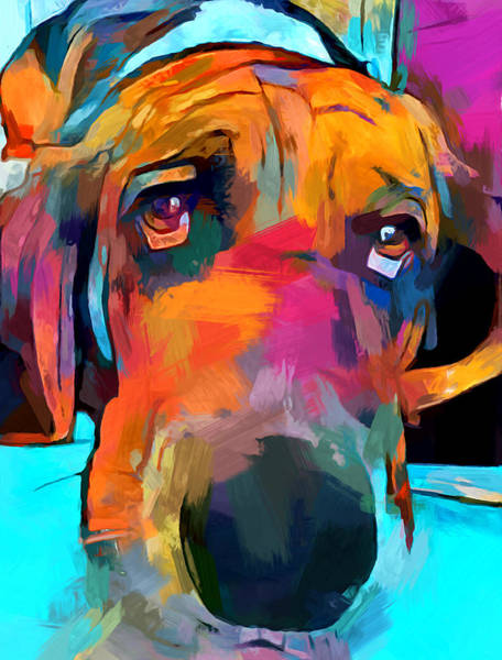 Wall Art - Painting - Basset Hound by Chris Butler