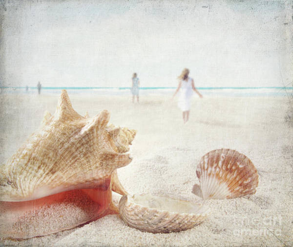 Wall Art - Photograph - Beach Scene With People Walking And Seashells by Sandra Cunningham
