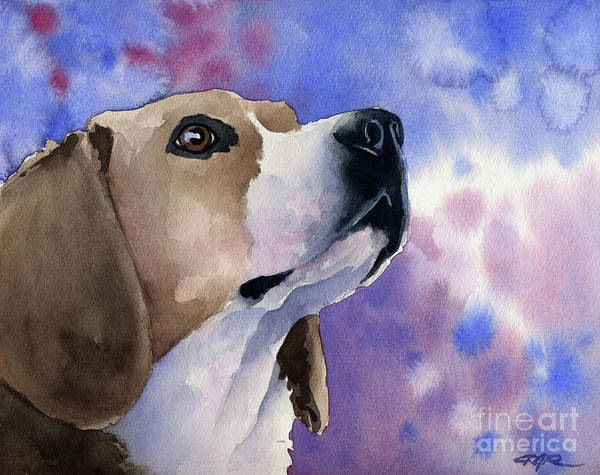 Beagle Painting - Beagle by David Rogers