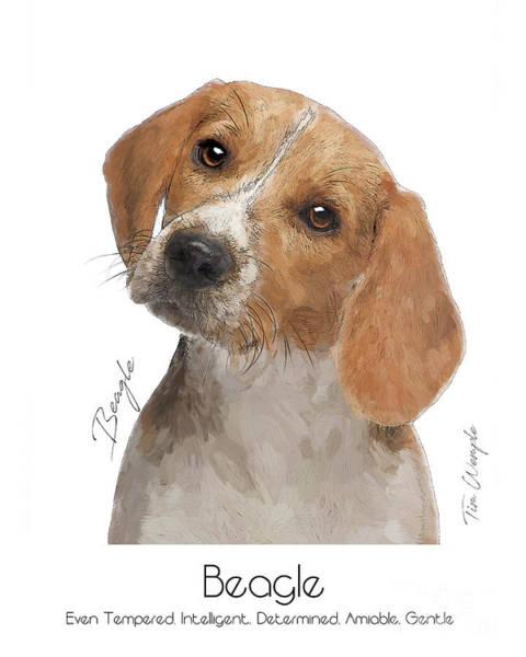Digital Art - Beagle Poster by Tim Wemple
