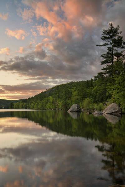 Photograph - Bear Pond Reflections by Darylann Leonard Photography