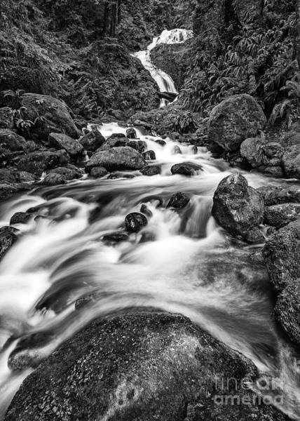 Wall Art - Photograph - Beautiful Bunch Creek Falls In The Olympic National Park by Jamie Pham