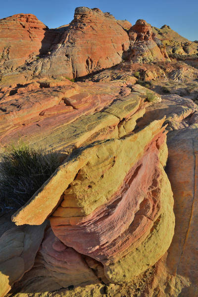 Photograph - Beautiful Colors Of Valley Of Fire by Ray Mathis