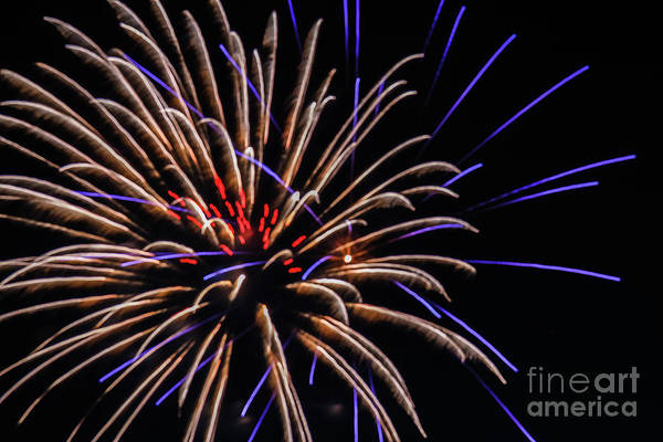 Fireworks Show Wall Art - Photograph - Beautiful Fireworks by Robert Bales