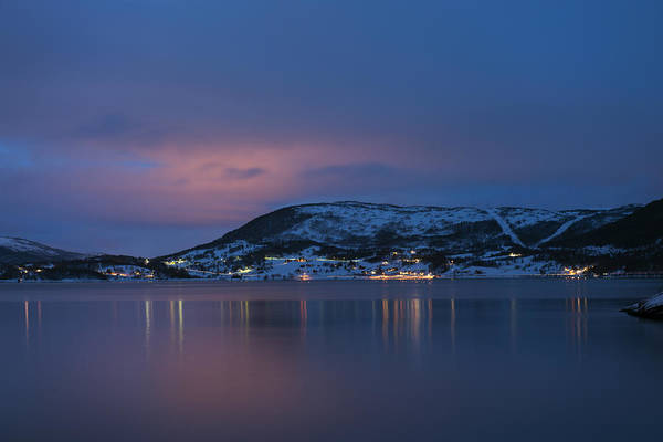 Photograph - Before Dawn, Bogen Norway by Dubi Roman