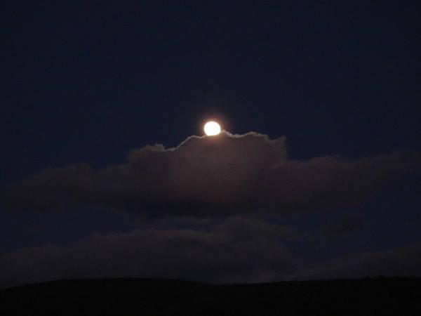 Wall Art - Photograph - Berkshire Moonlight by Dahlia Tumavicus