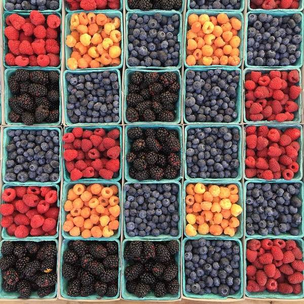 Wall Art - Photograph - Berries by Happy Home Artistry