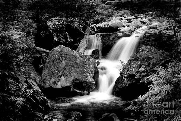 Photograph - Best Of The Smokies by Paul W Faust - Impressions of Light