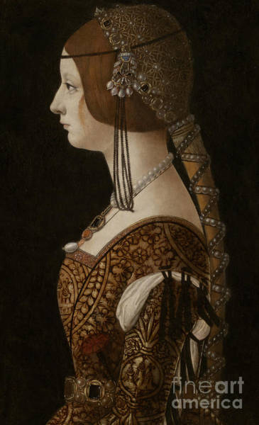 Plaits Painting - Bianca Maria Sforza by Giovanni Ambrogio de Predis
