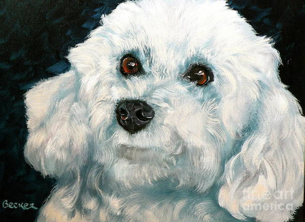 Wall Art - Painting - Bichon Frise by Susan A Becker