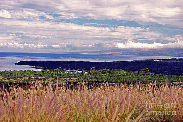 Photograph - Big Island Landscape 1 by Bette Phelan