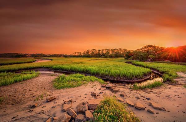 Photograph - Big Talbot Island by Peter Lakomy