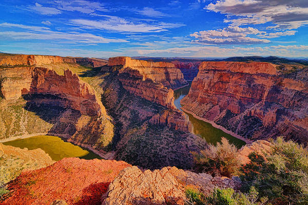 Photograph - Bighorn Canyon by Greg Norrell