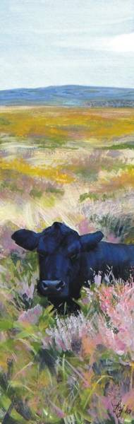 Wall Art - Painting - Black Cow Dartmoor by Mike Jory