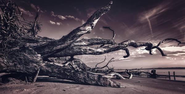 Photograph - Black Rock Beach by Peter Lakomy