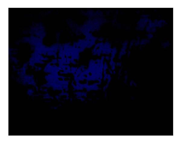 Digital Art - Blau by Doug Duffey