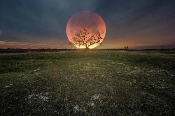 Photograph - Blood Moon  by Aaron J Groen