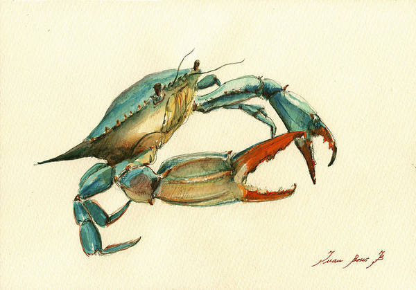 Nautical Wall Art - Painting - Blue Crab Painting by Juan  Bosco