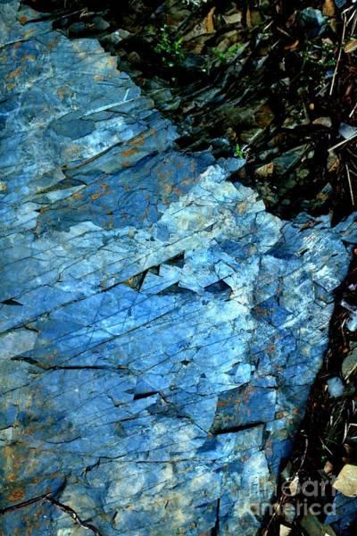 Photograph - Blue by Marcia Lee Jones