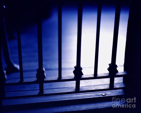 Photograph - Blue Mood by John Bowers