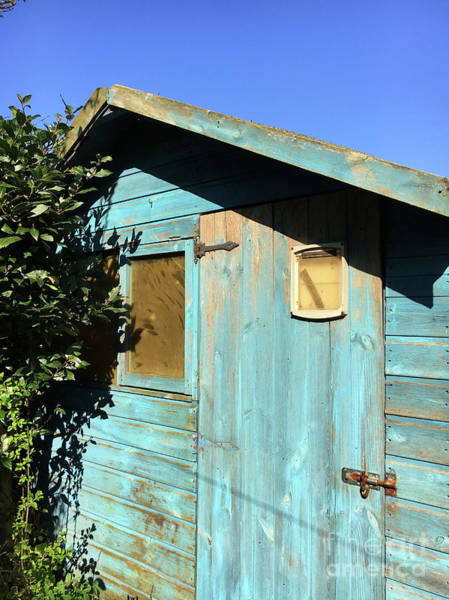 Wall Art - Photograph - Blue Shed by Tom Gowanlock
