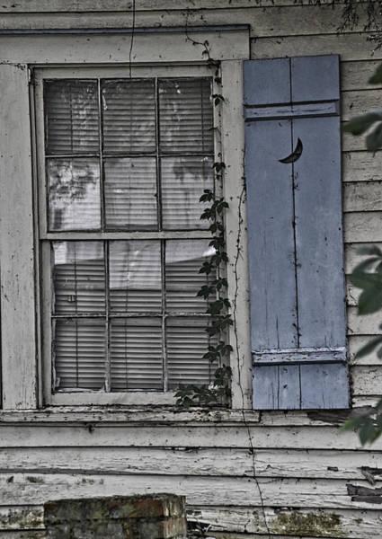 Wall Art - Photograph - Blue Shutter by Linda Brown