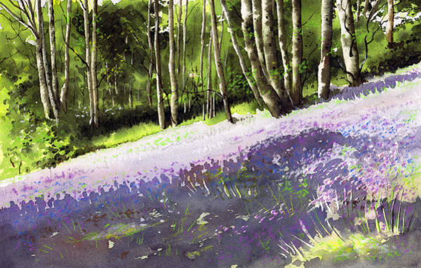 Wall Art - Painting - Bluebell Wood by Paul Dene Marlor