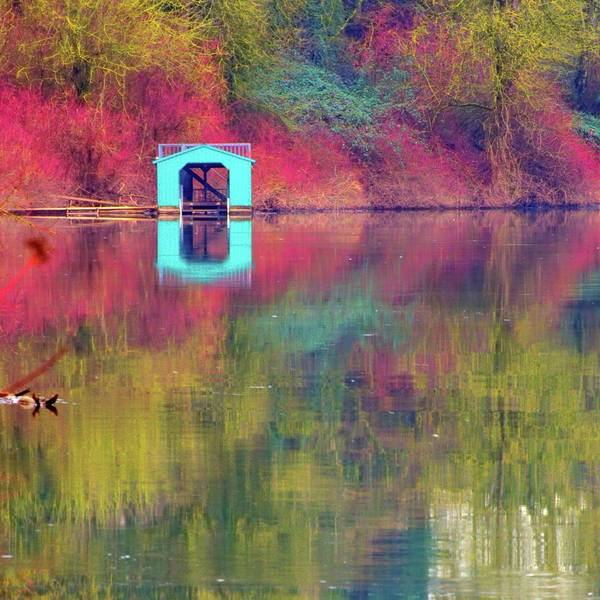 Photograph - Boathouse 20850 by Jerry Sodorff