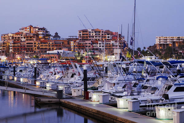 Anchor Photograph - Boats In A Marina by Jeremy Woodhouse