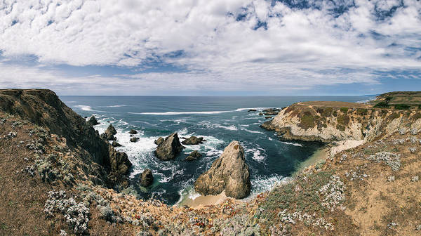 Photograph - Bodega Head  by Lee Harland